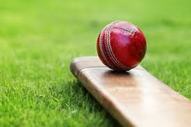 One Of The Best Cricket Prediction Website
