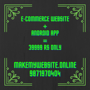 Make my website e-commerce package price